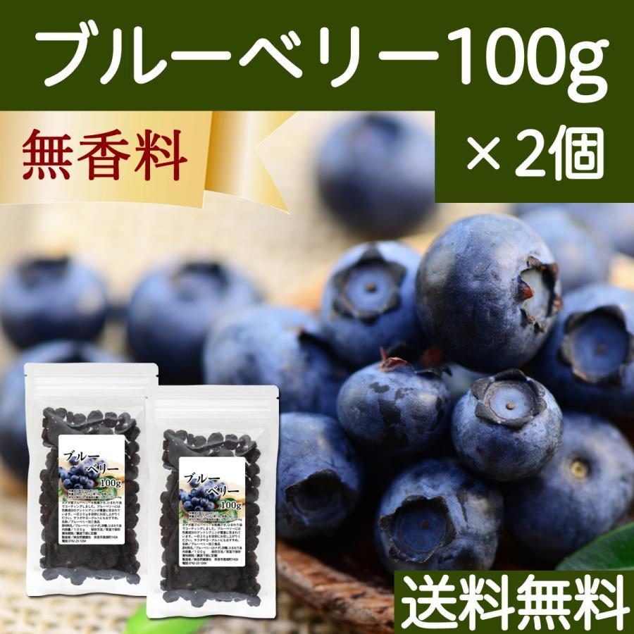 ブルーベリー100g×2個 ドライフルーツ 送料無料|hl-labo