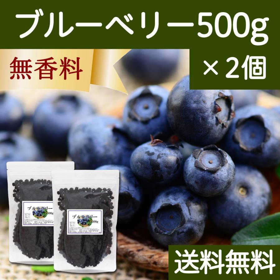 ブルーベリー500g×2個 ドライフルーツ チャック付き袋 送料無料|hl-labo