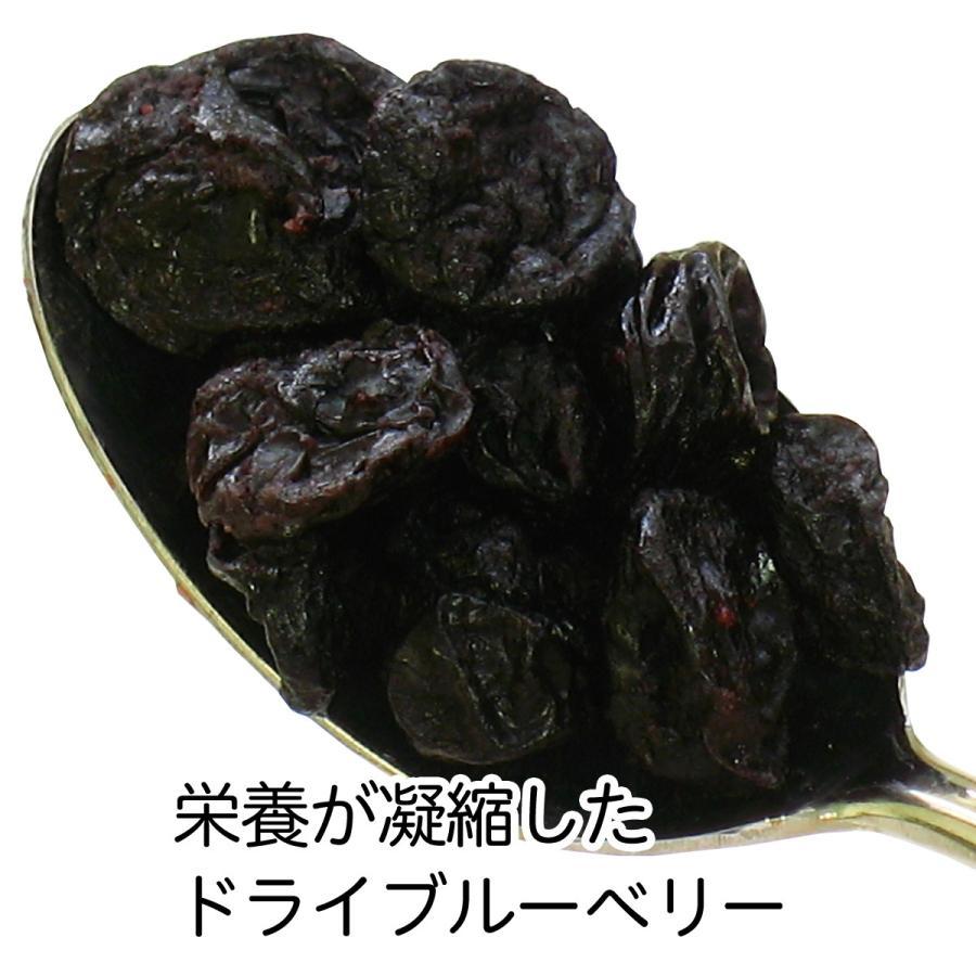 ブルーベリー500g×2個 ドライフルーツ チャック付き袋 送料無料|hl-labo|03