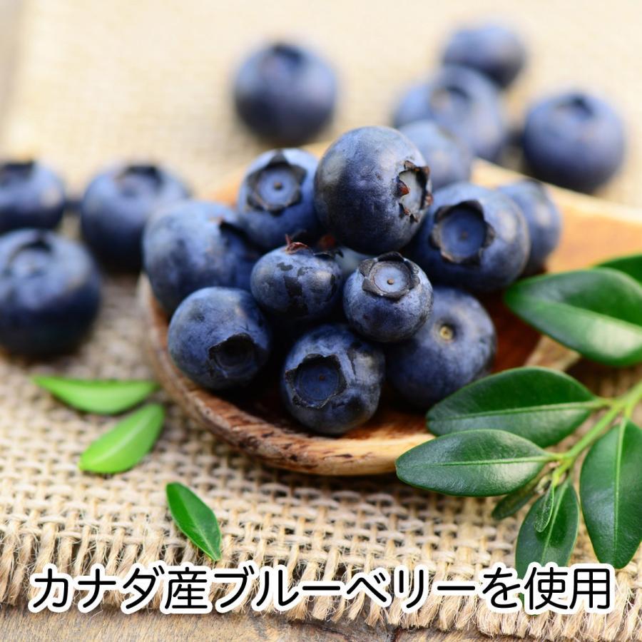 ブルーベリー500g×4個 ドライフルーツ チャック付き袋 送料無料|hl-labo|02