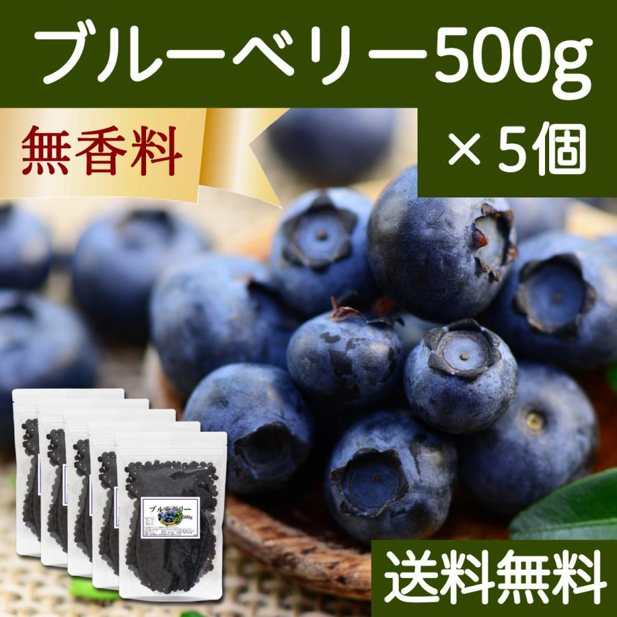 ブルーベリー500g×5個 ドライフルーツ チャック付き袋 送料無料 hl-labo