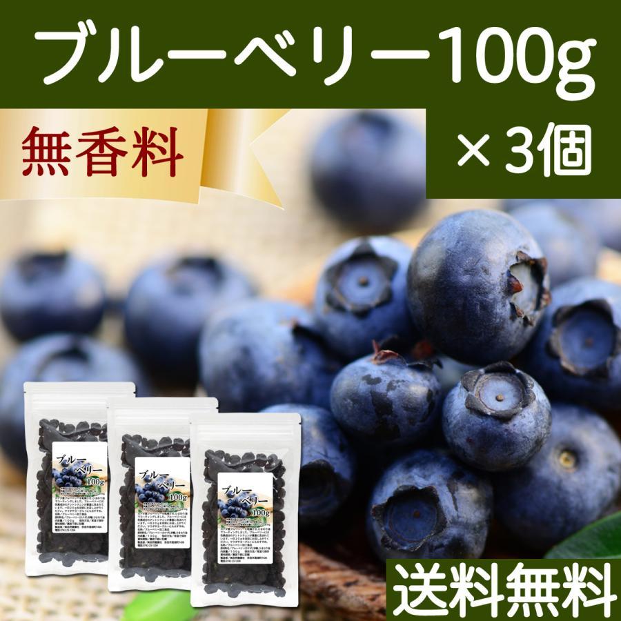ブルーベリー100g×3個 ドライフルーツ 送料無料|hl-labo