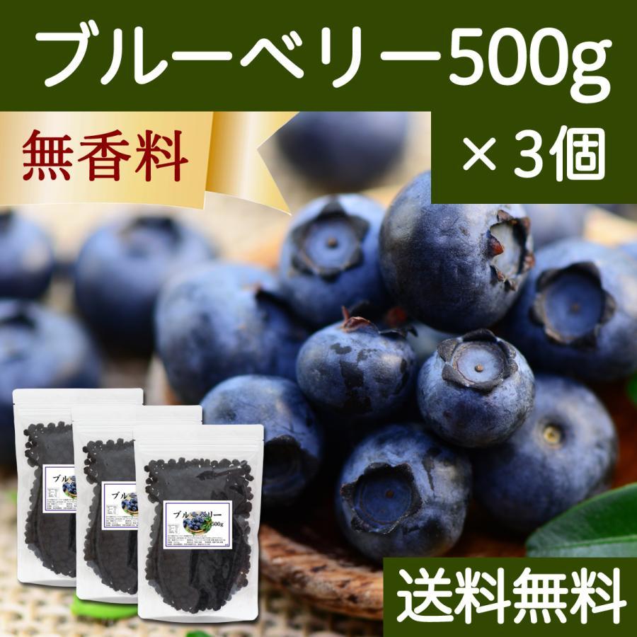 ブルーベリー500g×3個 ドライフルーツ チャック付き袋 送料無料|hl-labo