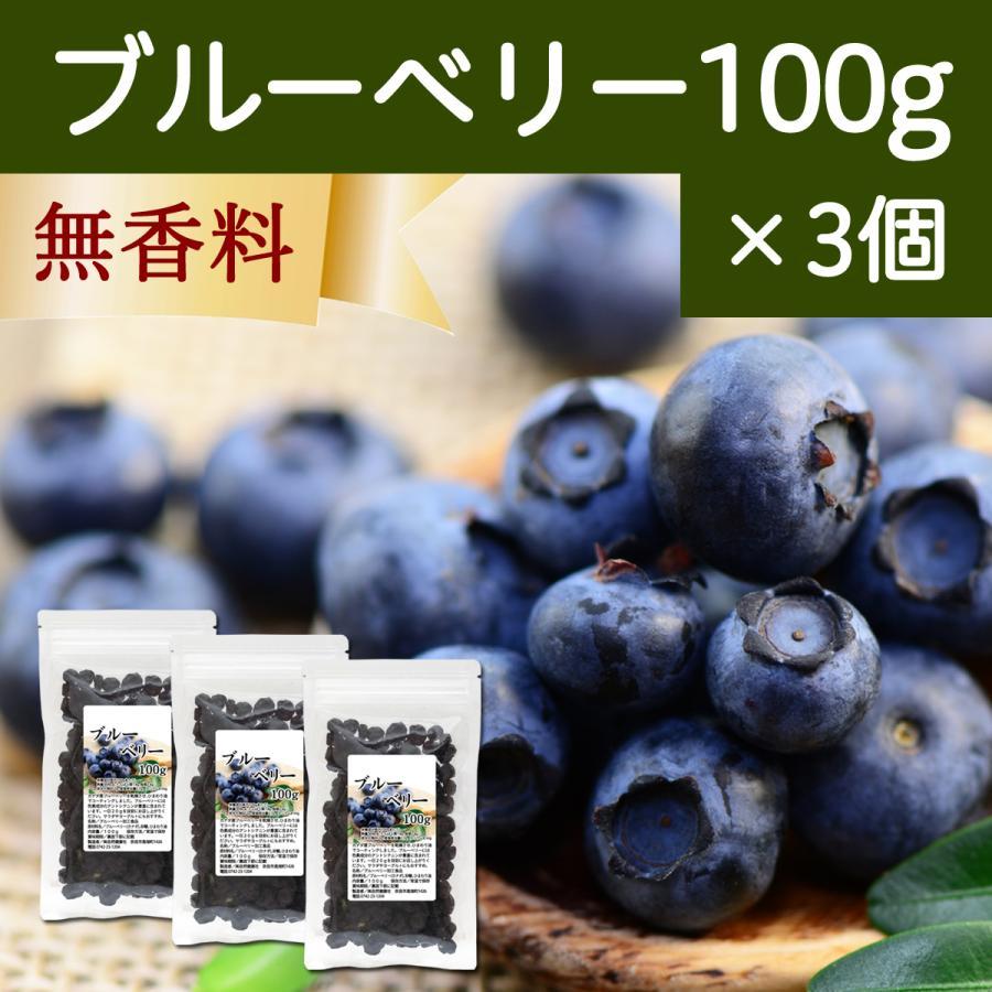 ブルーベリー100g×3個 ドライフルーツ hl-labo