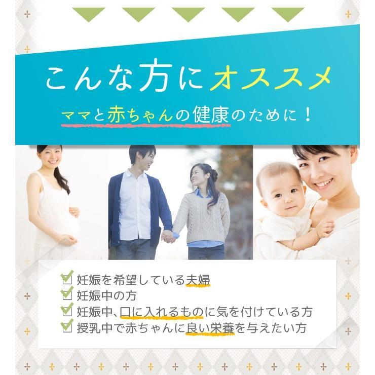 葉酸 葉酸サプリ 葉酸サプリメント タブレット 妊娠 妊婦 妊活 日本製 ママビューティ葉酸サプリ ネコポス便 hlife 14