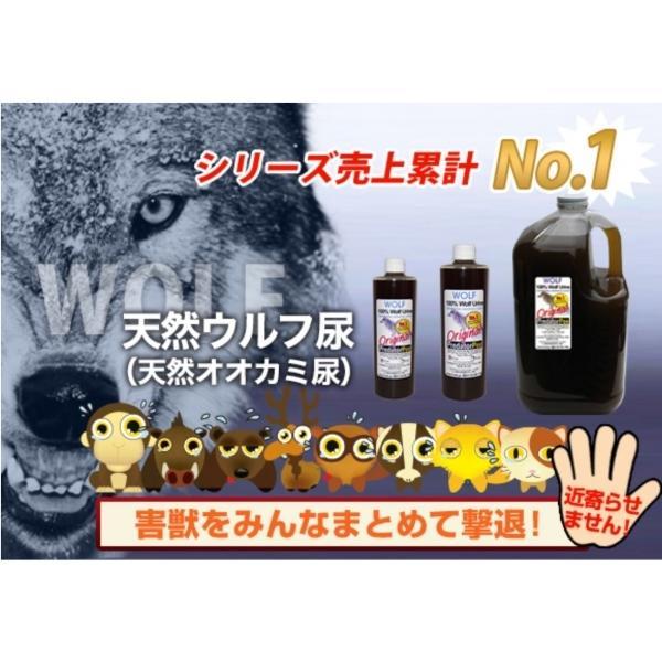 天然100%野生オオカミ尿 天然ウルフ尿 害獣対策 イノシシ猿ハクビシン鹿 野良猫 ウルフピー同内容同品質品 アニマルピーNo.1 ガロンボトル hm6 02