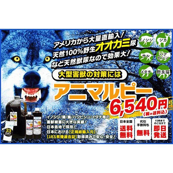 天然100%野生オオカミ尿 天然ウルフ尿 害獣対策 イノシシ猿ハクビシン鹿 野良猫 ウルフピー同内容同品質品 アニマルピーNo.1 ガロンボトル hm6 03
