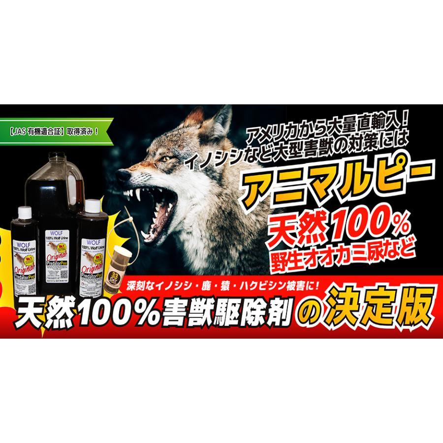 天然100%野生オオカミ尿 天然ウルフ尿 害獣対策 イノシシ猿ハクビシン鹿 野良猫 ウルフピー同内容同品質品 アニマルピーNo.1 ガロンボトル hm6 05