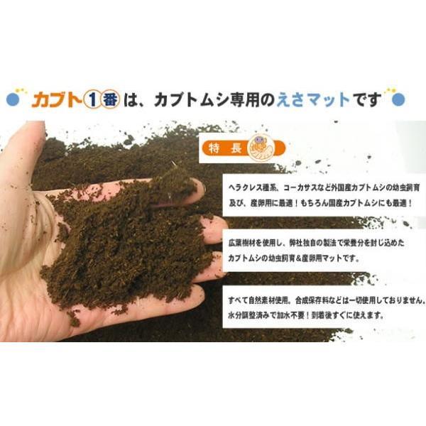 カブト1番 10L カブト幼虫の餌|hobby-club|02