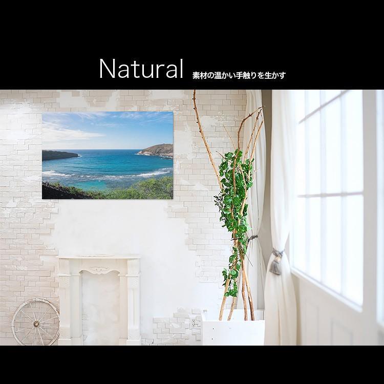 【日本製】アートボード/アートパネル artmart アートマート 絵画や写真をアルミフレームで表現するインテリアコーディネイト(90p-bi0014-blu-sa)