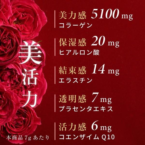 コラーゲン ヒアルロン酸 粉末 サプリメント 100g(コラーゲンペプチド プラセンタ エラスチン コエンザイムQ10 美容 collagen)|hogarakagenki|05