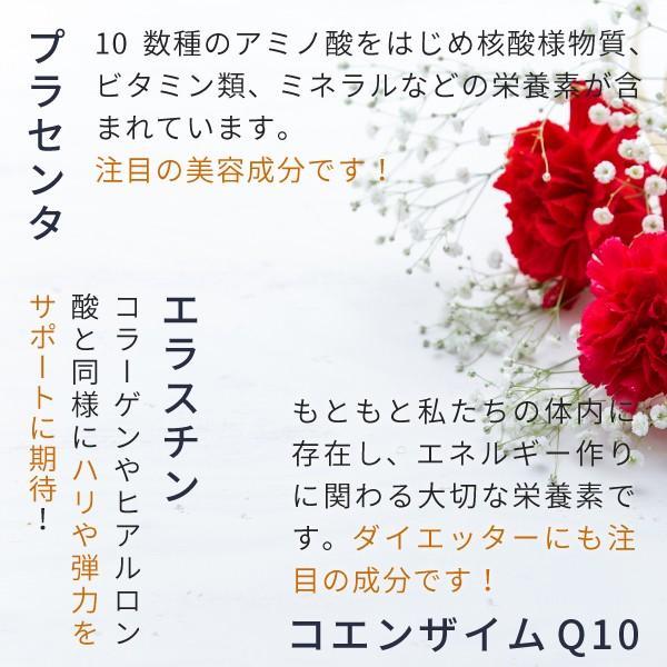 コラーゲン ヒアルロン酸 粉末 サプリメント 100g(コラーゲンペプチド プラセンタ エラスチン コエンザイムQ10 美容 collagen)|hogarakagenki|08