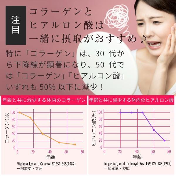 コラーゲン ヒアルロン酸 粉末 サプリメント 100g(コラーゲンペプチド プラセンタ エラスチン コエンザイムQ10 美容 collagen)|hogarakagenki|09