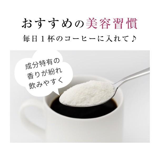 コラーゲン ヒアルロン酸 粉末 サプリメント 100g(コラーゲンペプチド プラセンタ エラスチン コエンザイムQ10 美容 collagen)|hogarakagenki|10