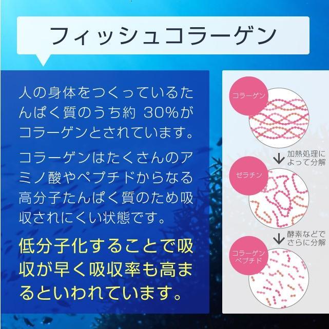 コラーゲン 粉末 500g フィッシュ サプリメント(コラーゲンペプチド 美容 collagen supplement)|hogarakagenki|05