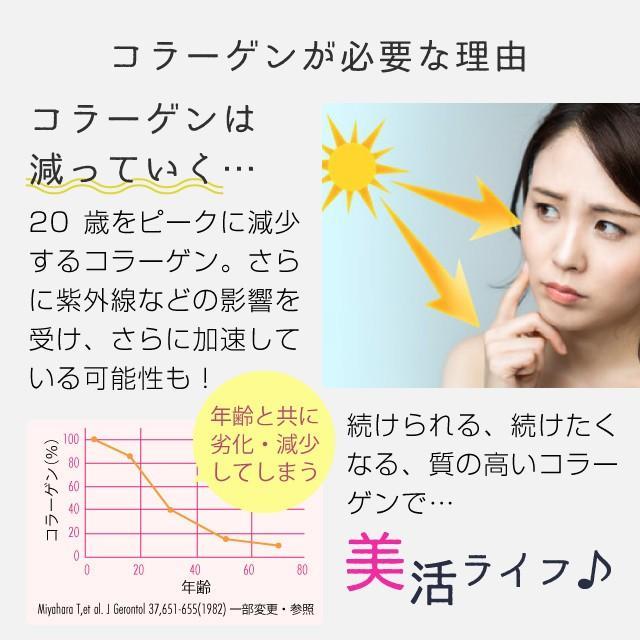 コラーゲン 粉末 500g フィッシュ サプリメント(コラーゲンペプチド 美容 collagen supplement)|hogarakagenki|06