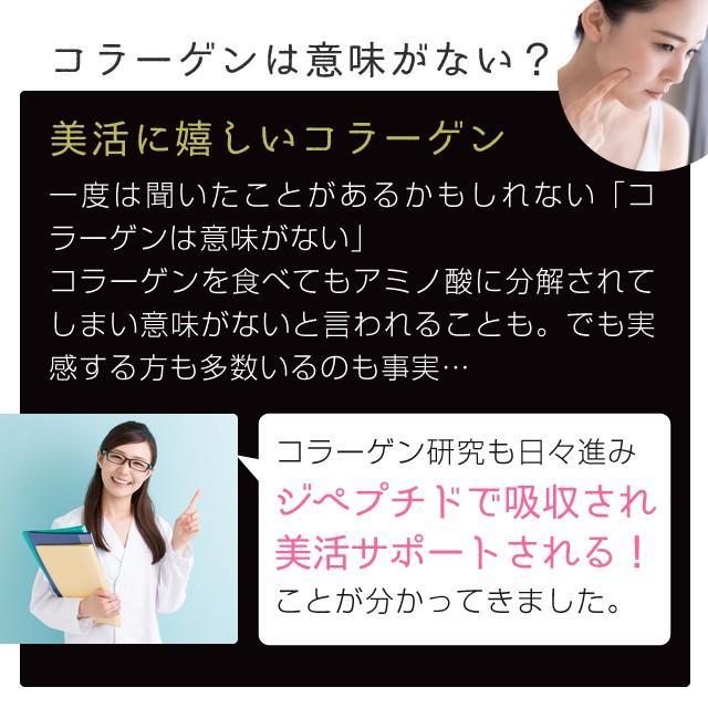 コラーゲン 粉末 500g フィッシュ サプリメント(コラーゲンペプチド 美容 collagen supplement)|hogarakagenki|07