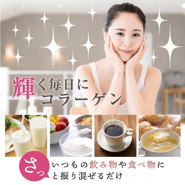 コラーゲン 粉末 500g フィッシュ サプリメント(コラーゲンペプチド 美容 collagen supplement)|hogarakagenki|09