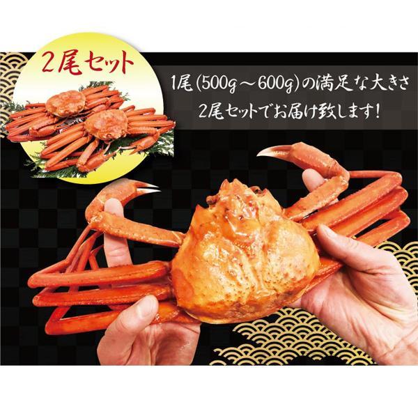 北海道産 紅 ズワイガニ【2尾セット】送料無料(ボイル:冷凍)(1尾500g~600g×2) hokkaido-giftmall 11