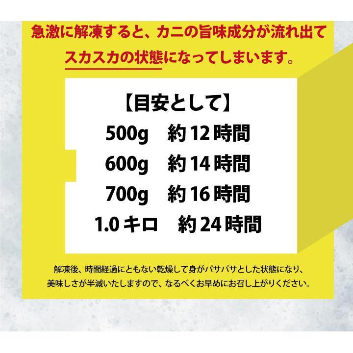 北海道産 紅 ズワイガニ【2尾セット】送料無料(ボイル:冷凍)(1尾500g~600g×2) hokkaido-giftmall 13