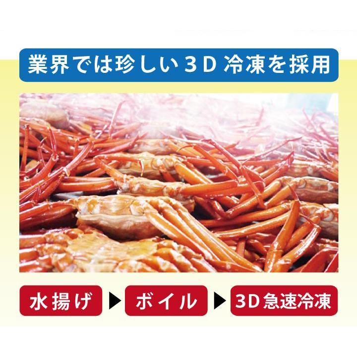 北海道産 紅 ズワイガニ【2尾セット】送料無料(ボイル:冷凍)(1尾500g~600g×2) hokkaido-giftmall 06