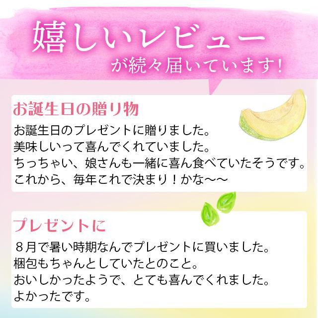 プレゼント ギフト アイス 北海道 送料無料 アイスクリーム カウベルアイス 6個セット / 北海道産 カップアイス チョコレート hokkaido-gourmation 04