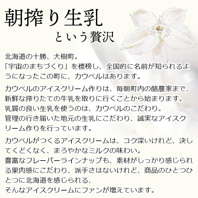 プレゼント ギフト アイス 北海道 送料無料 アイスクリーム カウベルアイス 6個セット / 北海道産 カップアイス チョコレート hokkaido-gourmation 05