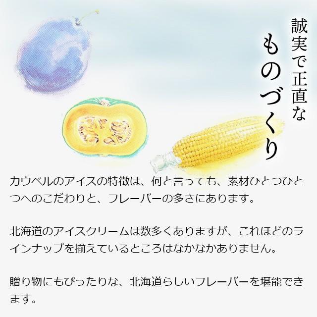 プレゼント ギフト アイス 北海道 送料無料 アイスクリーム カウベルアイス 6個セット / 北海道産 カップアイス チョコレート hokkaido-gourmation 07