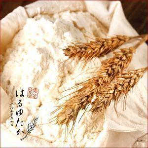 送料無料 小麦粉 中力粉 北もみじ 大袋(25kg) 25キロ 北海道産 国産|hokkaido-gourmation|02