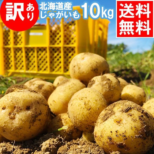 訳アリ 産地直送 新じゃがいも 即納最大半額 送料無料 北海道産 じゃがいも ジャガイモ 10kg 北海道 訳あり北海道産じゃがいも 10kg とうや 無料