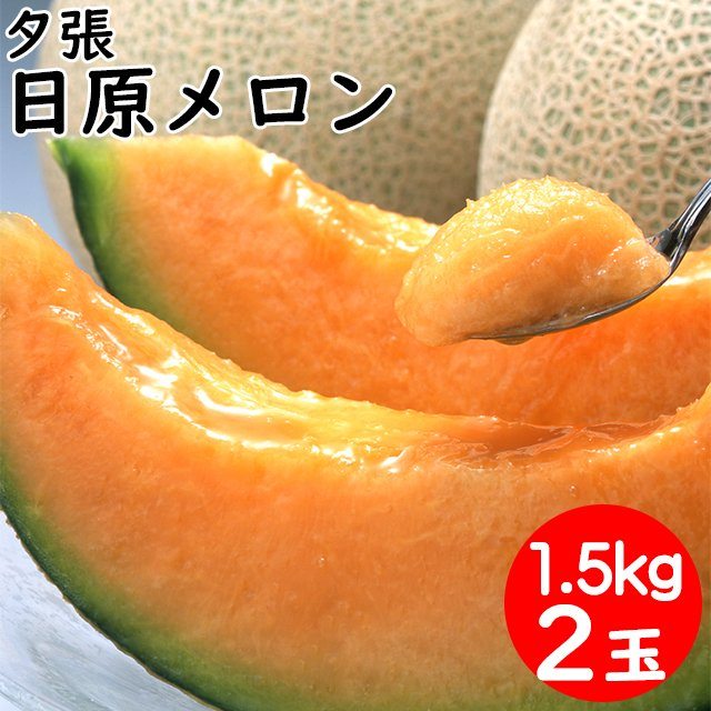 敬老の日 プレゼント 推奨 メロン フルーツ ギフト 送料無料 北海道夕張産 北海道 果物 こだわり 美品 日原メロン 約1.5kg×2玉 ゆうばり