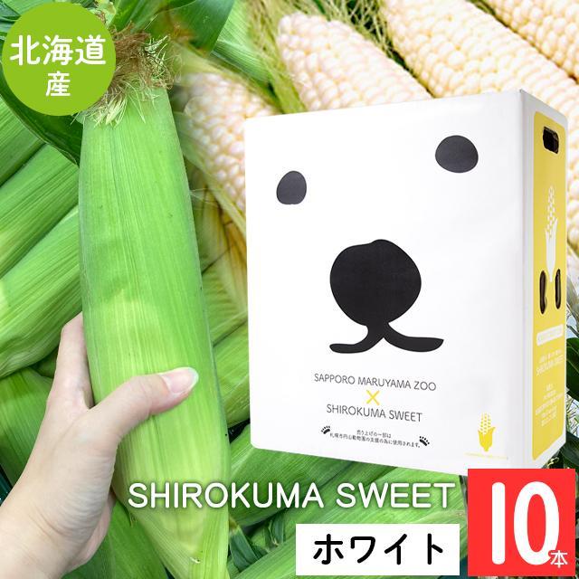 予約受付中 とうもろこし 北海道 送料無料 SHIROKUMA SWEET 北海道産 雪の妖精 ピュアホワイト 産地直送 おトク ホワイトショコラ お得なキャンペーンを実施中 10本 とうきび ホワイトコーン