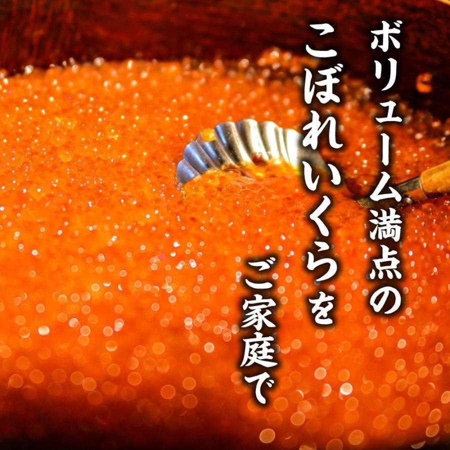 送料無料 北海道産 いくら 醤油漬 250g   / いくら 北海道 イクラ 卵 ギフト 魚卵 市場 御歳暮 グルメ フードロス 食品ロス|hokkaido-okada|02
