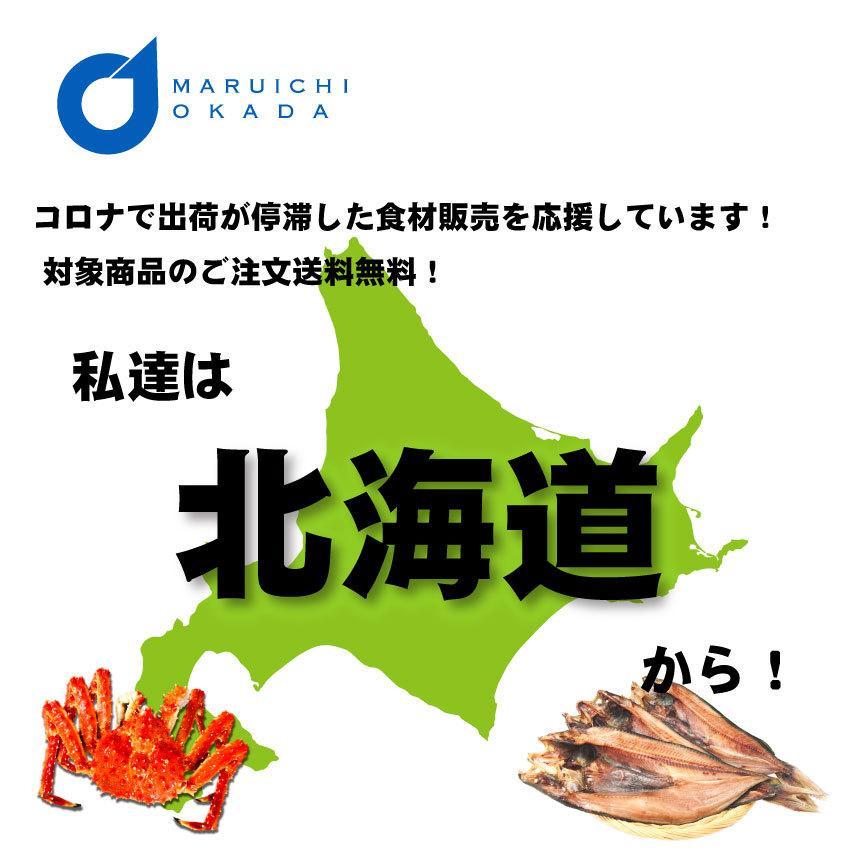送料無料 北海道産 いくら 醤油漬 250g   / いくら 北海道 イクラ 卵 ギフト 魚卵 市場 御歳暮 グルメ フードロス 食品ロス|hokkaido-okada|11