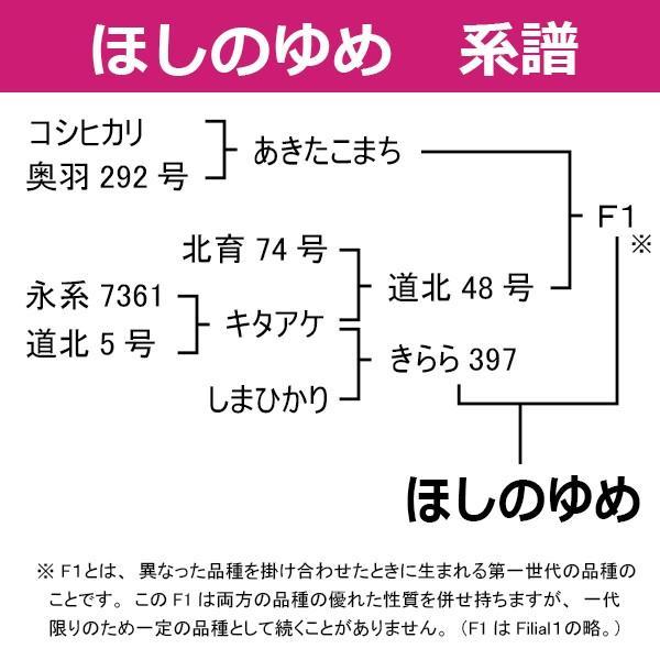 令和2年産 ほしのゆめ 30kg 玄米 一等米 北海道米 当麻産籾貯蔵米|hokubei-shop|04
