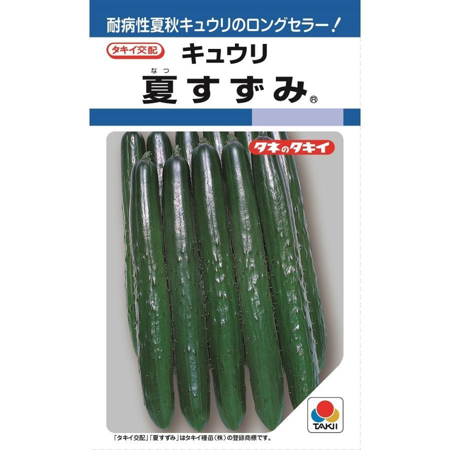 タキイ交配 夏すずみ 胡瓜 品質保証 野菜種子 店 DF17粒