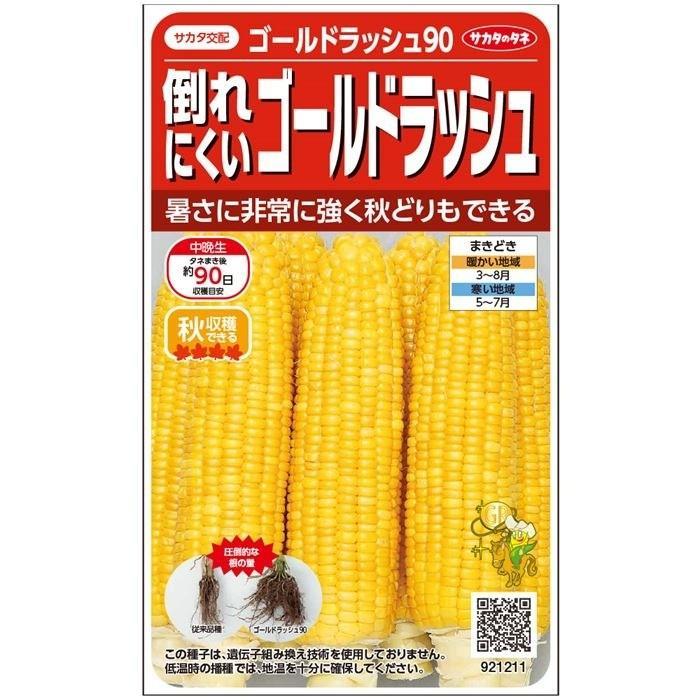 サカタ交配 倒れにくい ゴールドラッシュ90 実咲野菜 供え 25ml 送料0円