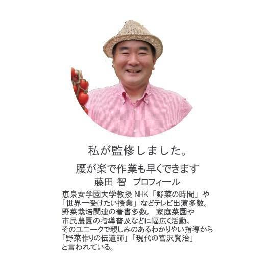 送料無料 藤田智先生監修 能率鍬(のうりつくわ) Women's hokuetsunoji-shop 04