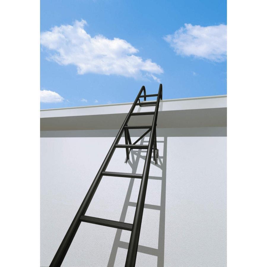 YKKAPウォールエクステリア アルミはしごエクスタラップII セット品:単体タイプ ショッピング 幅430mm×高3375mm 出幅:200mm YKK ハシゴ 壁付けはしご お歳暮 梯子