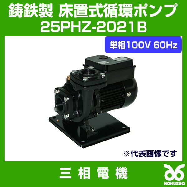 三相電機 鋳鉄製 床置式循環ポンプ 25PHZ-2021B 単相100V 60Hz SANSO