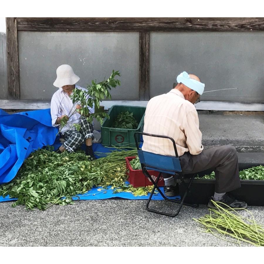 山田のはぶ草茶 80g|home407|04