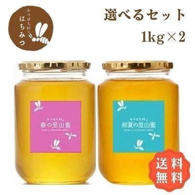 はちみつ 国産 好評 純粋 非加熱 岐阜県産 国産蜂蜜 人気ブレゼント 生産直売 はちみつ1kg2本セット
