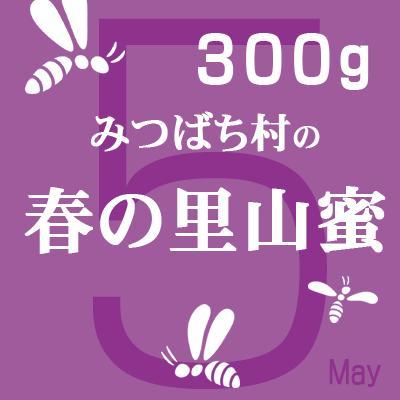 はちみつ 国産 純粋 春の里山蜜300g 2020年蜜 岐阜県産|honey-shop|02