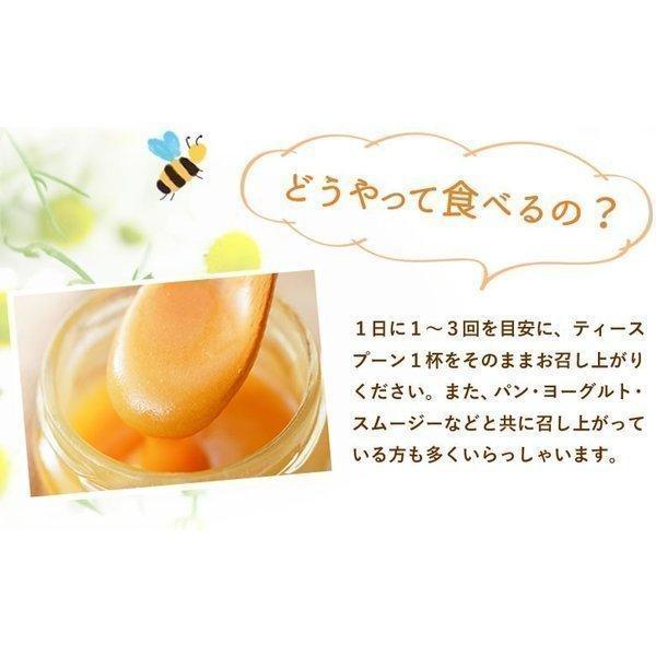 ギフトセット マヌカハニー プレミアム UMF5+ &マヌカハニー100%ロゼンジ(飴)|honeygreenbay|09