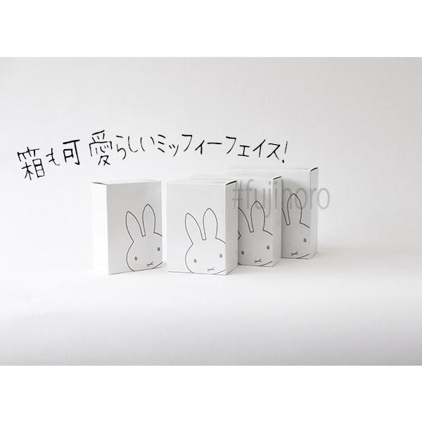 ほうろう 琺瑯 ホーロー ミッフィー ディックブルーナ おかお 浅型 浅型角容器 2点セット 安心のメーカー直販 シンプル フェイス|honeyware|09