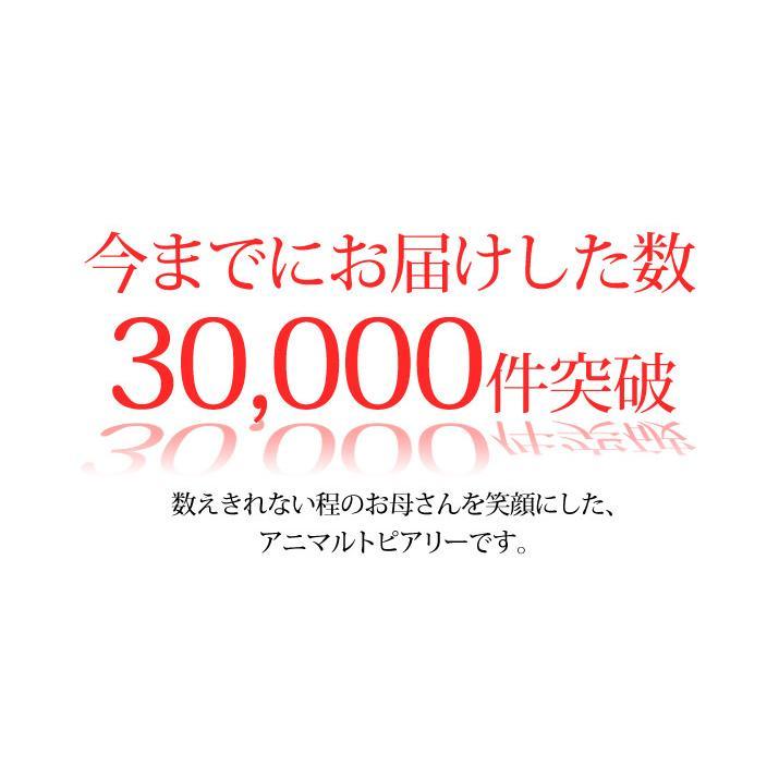 母の日 2021 プレゼント カーネーション トピアリーモス セット 花 ギフト 母の日ギフト|honmamonya|03