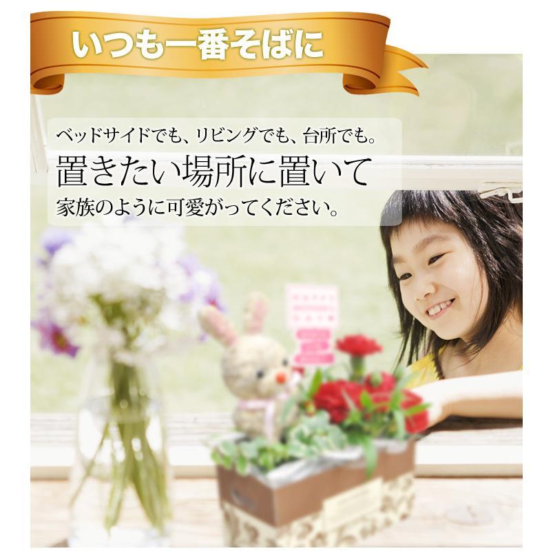 母の日 2021 プレゼント カーネーション トピアリーモス セット 花 ギフト 母の日ギフト|honmamonya|04