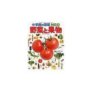 ランキングTOP5 別倉庫からの配送 野菜と果物 板木利隆