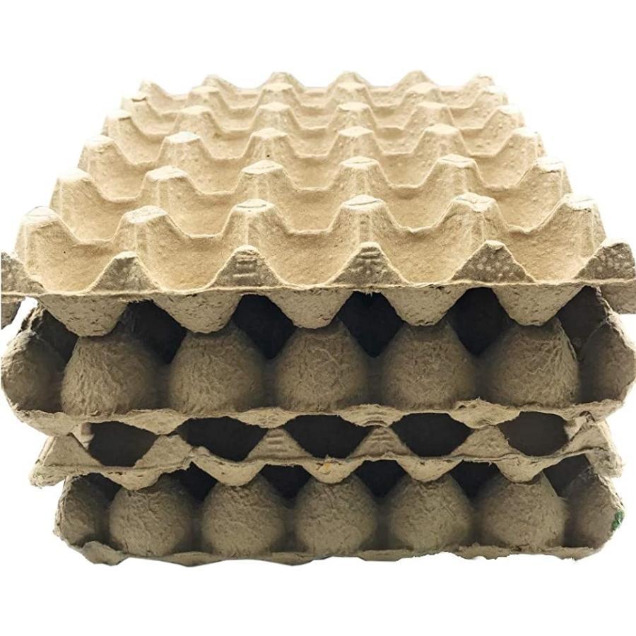 昆虫 直営限定アウトレット ハウス 卵トレー 卵パック 紙製 コオロギ 繁殖用 10枚セット 特売 飼育用 デュビア
