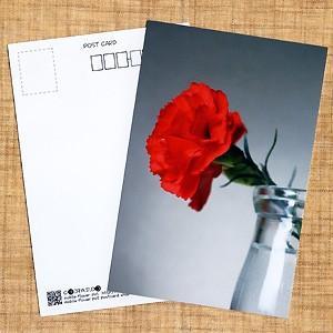 花のポストカード カーネーション(赤)|horiya-studio